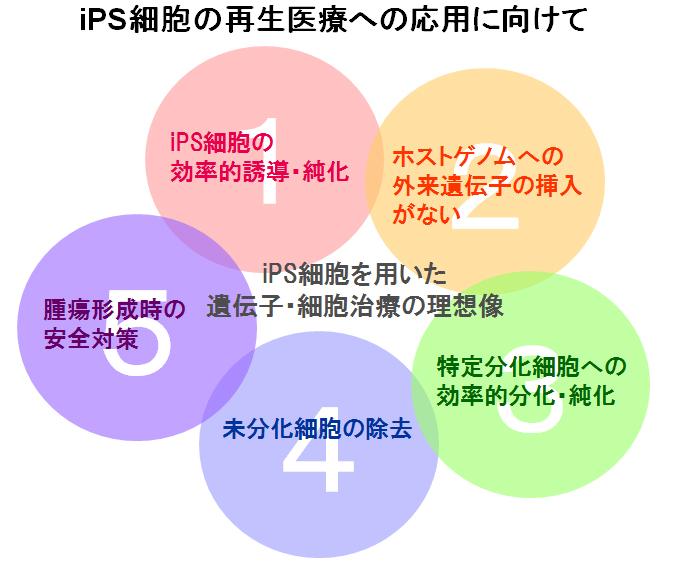 iPS課題