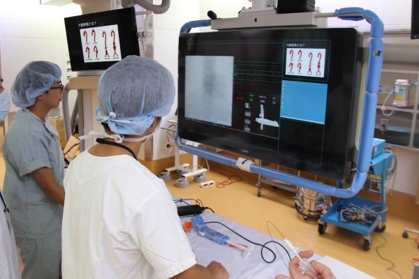 H28心臓血管外科「シミュレーターによるステントグラフト内挿術」