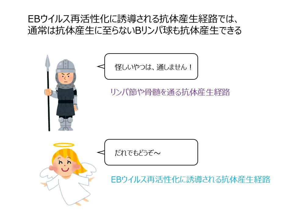 長田先生原稿用画像3