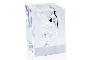 咽頭喉頭透明モデル